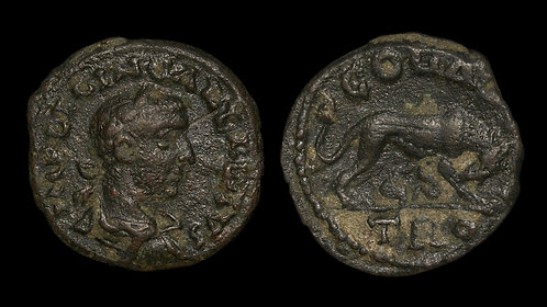 GALLIENUS . TROAS, Alexandria Troas . AE22 . Wolf and Twins