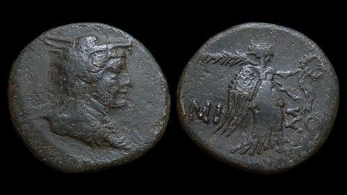 PONTOS, Amisos . Mithradates VI, 120-63 BC . AE22 . Amazon wearing wolfskin