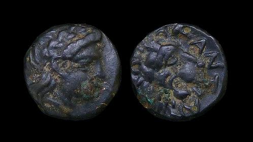TROAS, Antandros . 4th-3rd centuries BC . AE8 . Roaring lion's head