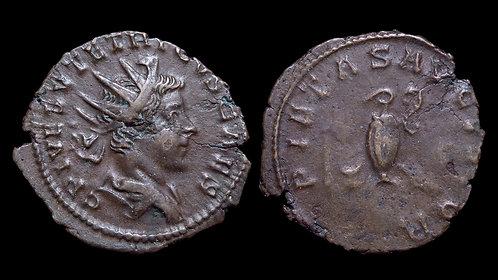 TETRICUS II, Usurper . AD 273-274 . Antoninianus . *Ex Clain-Stefanelli Coll.**