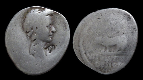 JULIUS CAESAR . 49-44 BC . AR Denarius . *Scarce, with a very nice portrait*