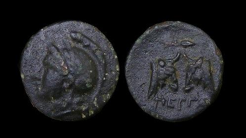 MYSIA, Pergamon . circa 310-282 BC . AE11 . Rare and unpublished denomination