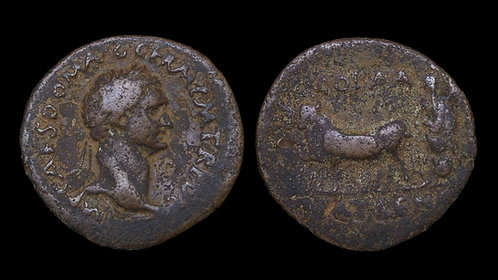 DOMITIAN . ACHAEA, Patrae . AE26 . Founder plowing with oxen