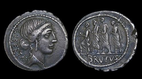 ROMAN REPUBLIC . M Junius Brutus, 54 BC . Denarius . Assassin of Julius Caesar