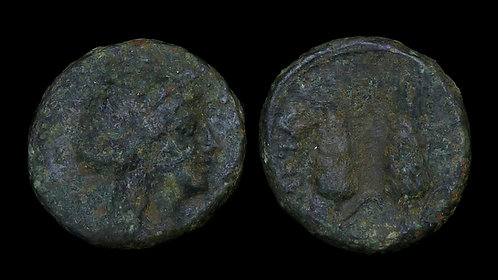 LUCANIA, Metapontion . after 280 BC . AE16 . Ears of Barley
