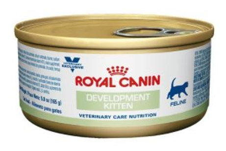 ROYAL CANIN DEVELOPMENT KITTEN LATA - 165G