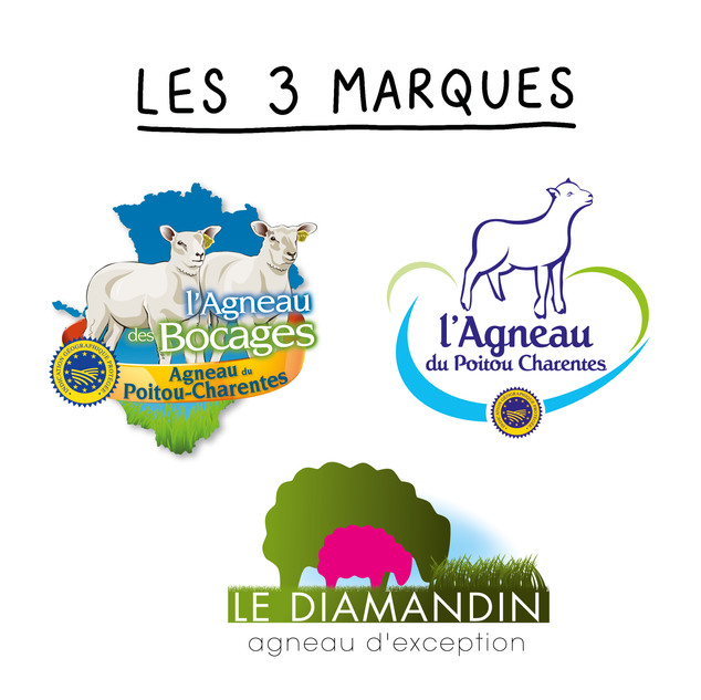 3 marques