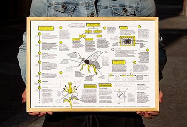 abeilles_2019.png