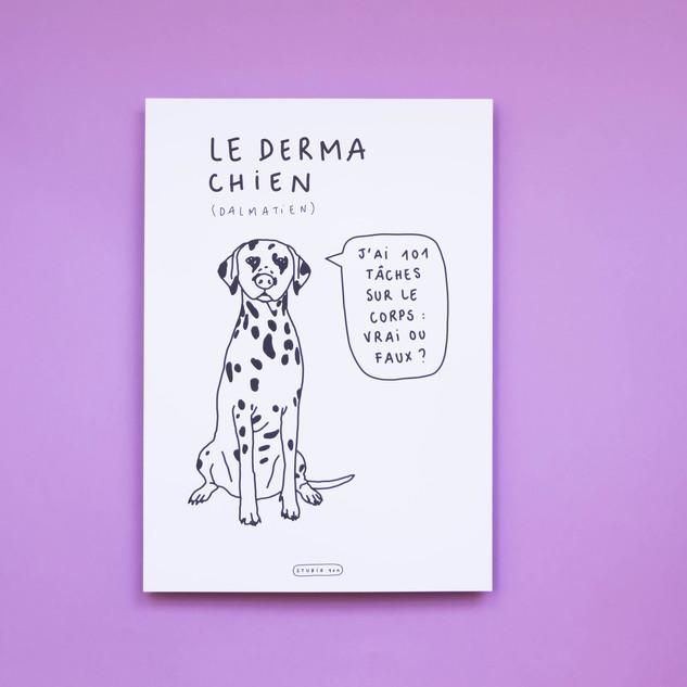 derma chien