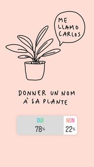 name plantes