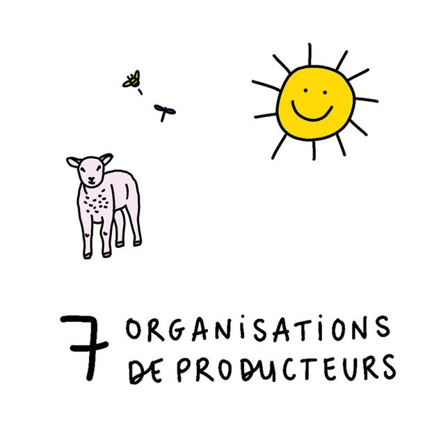 Organisations de producteurs