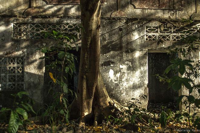 Armero, ruinas, memoria, ruins, colombia, memory