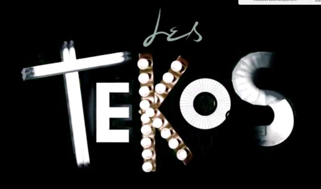 """Les Tekos""( Web série 2015)"
