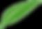 MFN-Leaf.png