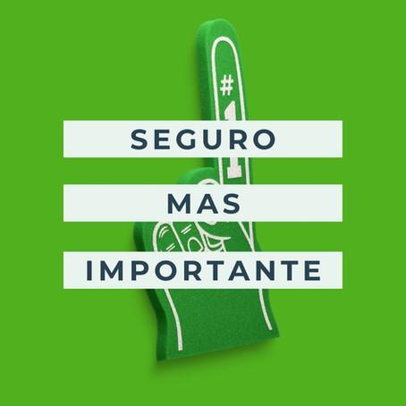 """EL SEGURO """"MÁS IMPORTANTE"""""""