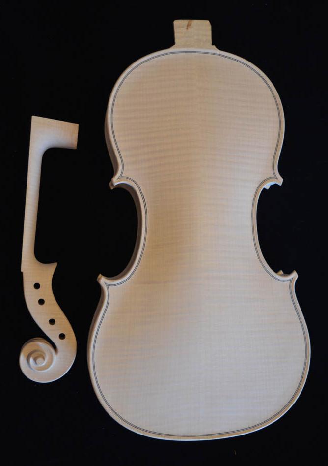 Violino su modello Goffriller