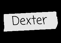 dexter nametag.png