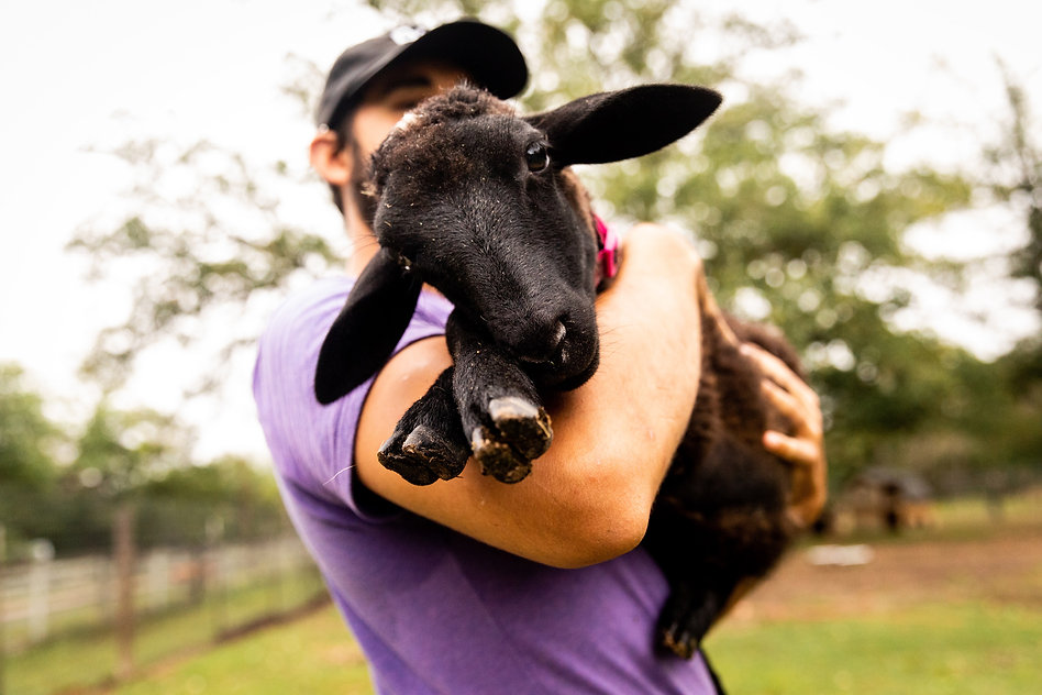 Olivia _ Austin Farm Sanctuary May 2021-