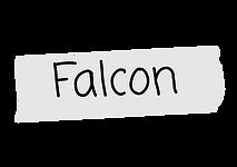 falcon nametag.png