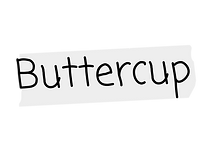 buttercup nametag.png