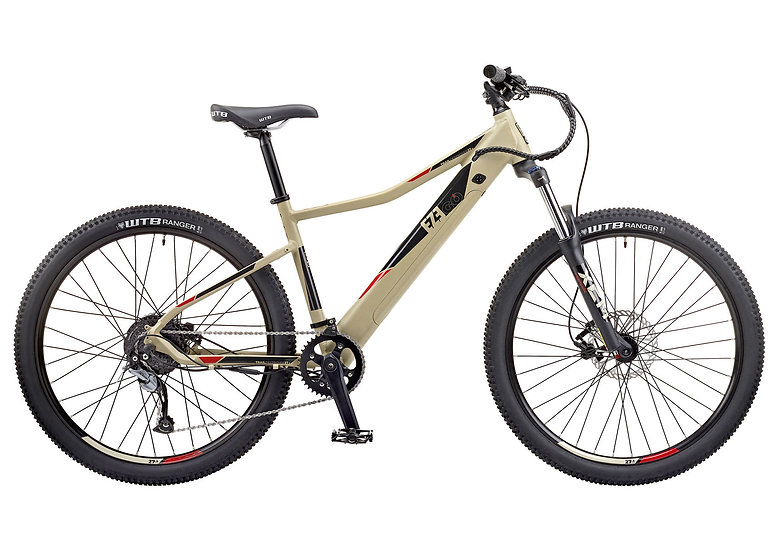 2020 EZEGO Trail Destroyer E-MTB