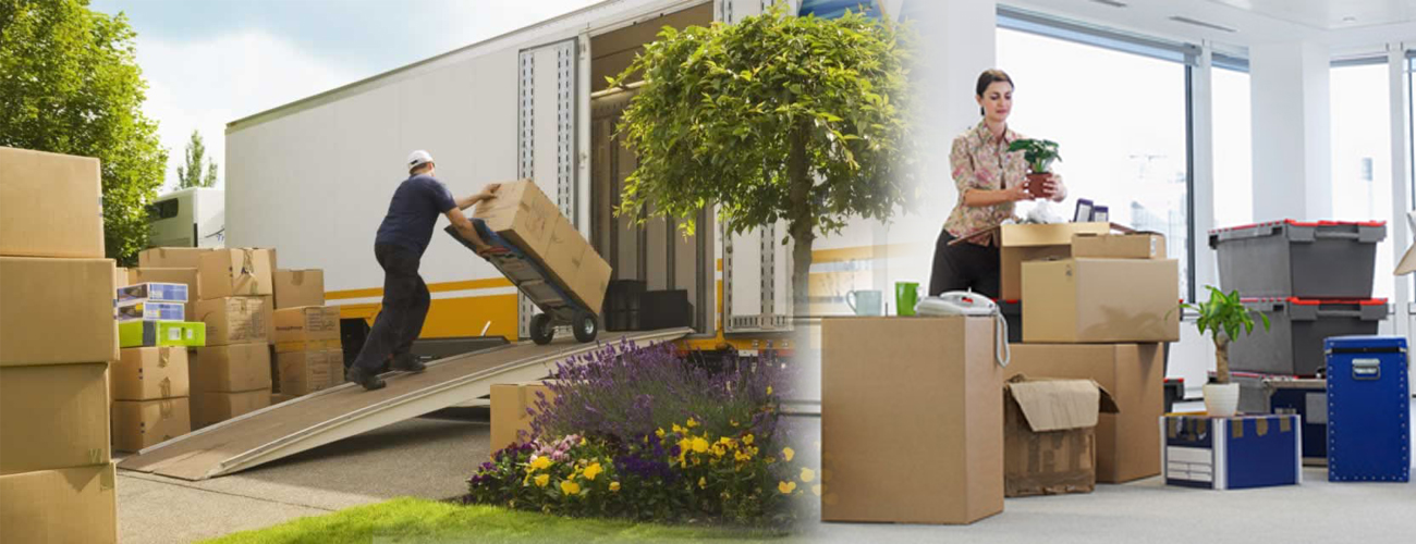 standar-moving-services