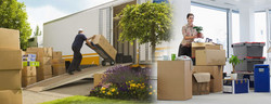 standar-moving-services