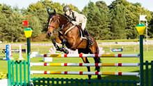 Championnat du monde militaire d'équitation.