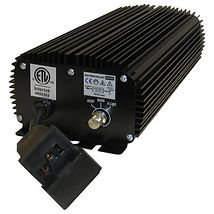 600 watt digital ballast.jpg