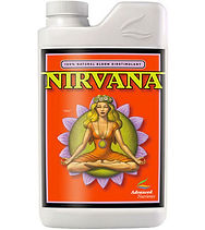 advanced-nirvana.jpg