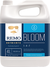 Remo4L.Bloom_500x_c61680bd-2cd7-4e39-b05