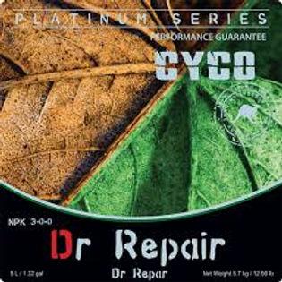 dr repair front.jpg