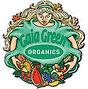 gaia green logo.jpg