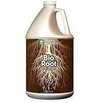 bio root.jpg