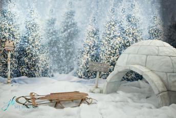 Winter Experience snow scene