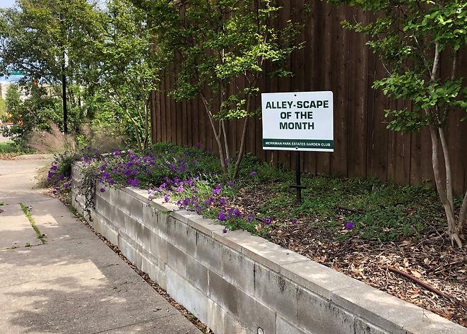 202004-alley.jpg