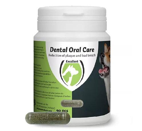 Dental Oral Care Hund