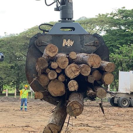 Forestry Tools | Excavator Log Grab