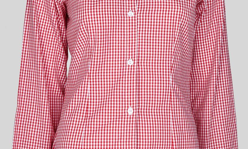 Camisa Feminina Y