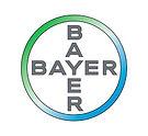 bayer_Prancheta 1.jpg
