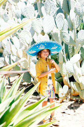 cactus_299.JPG