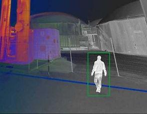 berthelon-alarmes-detection-video-de-mou