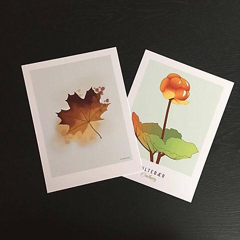 Kunstkort_butikk.jpg