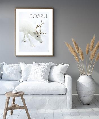BOAZU, poster