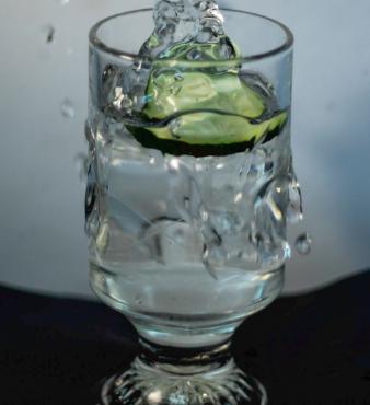 Cucumber shutter speed