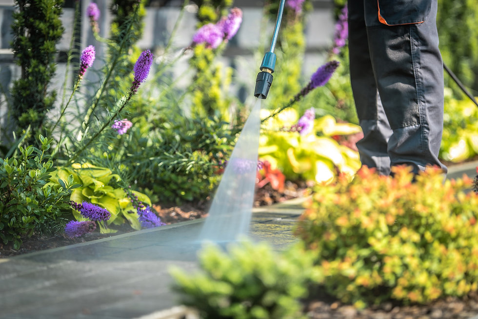 power-washing-garden-paths-GHWY5NR.jpg