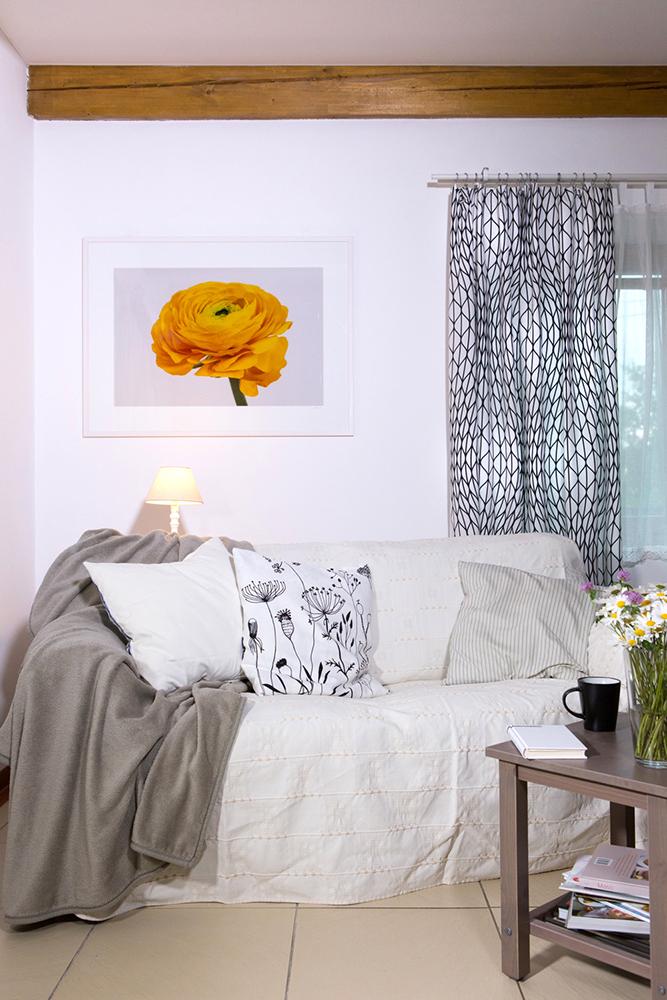 Fotka do obýváku