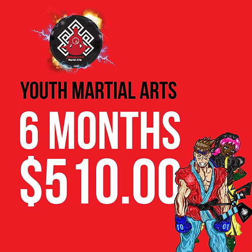 6 Month Youth Martial Arts Classes