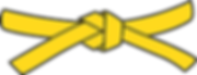 Yellow Belt PNG.png