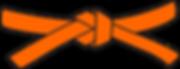 Orange belt PNG.png